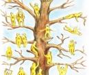 Cine eşti în acest copac? Testul care îţi dezvăluie starea emoțională