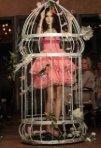 S-a lansat colectia Wonder Lolita - City Bird of Paradise