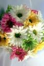 Cele 7 flori de toamna pentru buchetul de mireasa