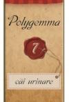 Polygemma, o noua gama de produse PlantExtrakt - sanatate de la natura