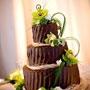 Alege un design de tort, inspirat din natura
