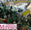Peste 26.000 de vizitatori la Targul Ghidul Miresei!