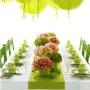 Nunta mea verde