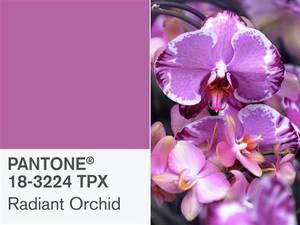 Radiant Orchid - culoarea anului 2014