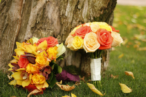 Oferta de nunta de la agentie