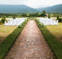 ceremonie de nunta excentrica