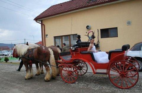 Trasura cu cai de inchiriat la nunta