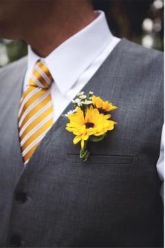 Cocarde din floarea soarelui
