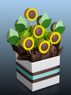Candy-bar cu floarea soarelui
