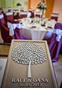 Top Event Galati, agentie de nunta