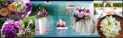 Oferta agentie de nunta