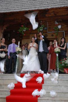 Porumbei la iesirea din biserica