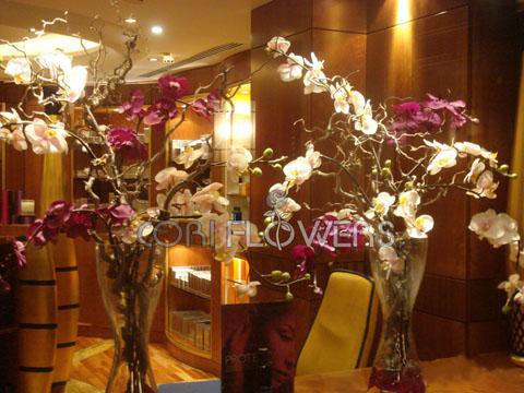 poze decoratiuni nunta 2013