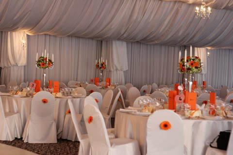 poza decoratiuni scaune nunta 2013