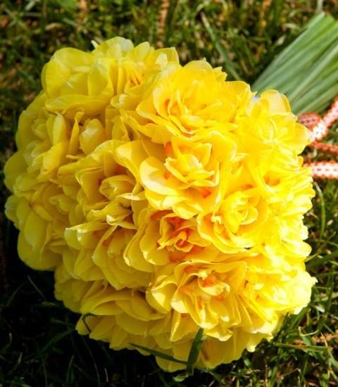 Buchet de mireasa din flori galbene
