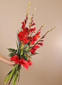 buchet de gladiole