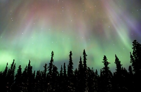 Aurora boreala in Whitehorse, Canada