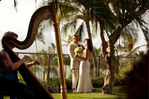 Harpa nunta
