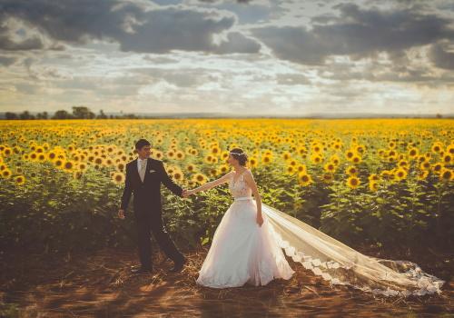 mire si mireasa in fata unui camp de floarea soarelui
