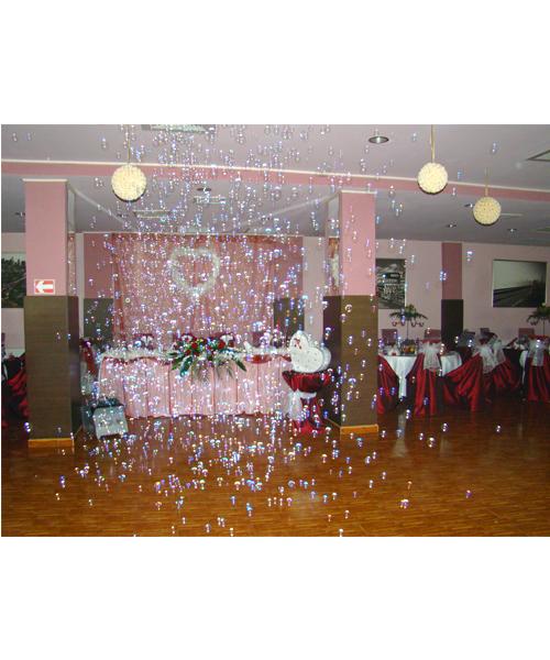 Restaurant nunta Passion Bucuresti poza 11