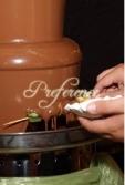 Fantani de Ciocolata Agentia Preference