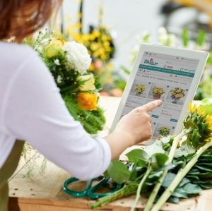 Floria.ro: Trandafirii, florile preferate ale Mariilor